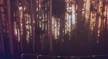 """Strange Lightning Causing Wildfires In America & Canada"""