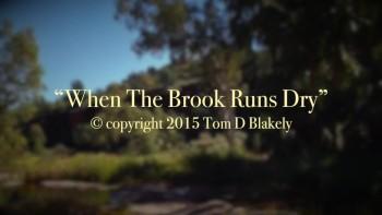 When The Brook Runs Dry