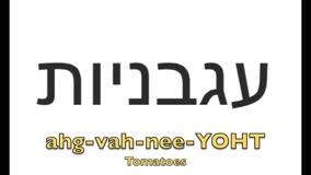 How to sayTomato in Hebrew