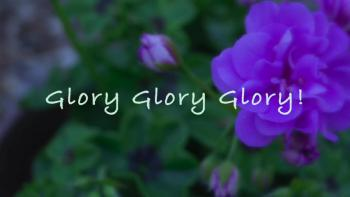 Glory Glory Glory!