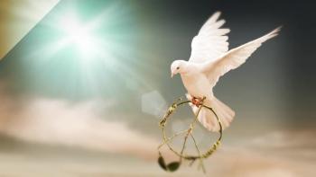 Xulon Press book Write Your Life With Grace - Fruit Of The Spirit Guided Journal | Tara Schiro