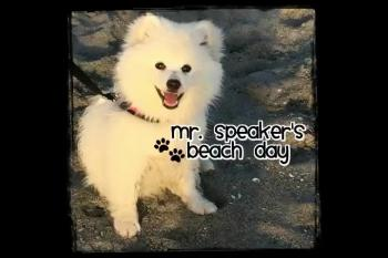 Mr. Speaker at the Beach