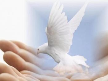 Who Is the Holy Spirit (Part 2)