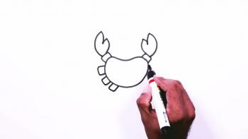 Crab Drawing Animal Drawings For Kids Family Videos