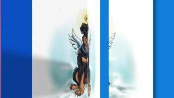 Xulon Press book Snipets from Heaven | Sandy Loker