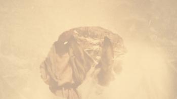Alph by Lee Carson (Book Trailer)