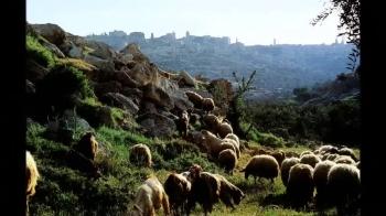 A VISIT TO BETHLEHEM
