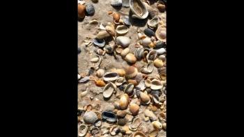 Oceans (Where Feet may Fail) ~ Lyric Video & Photos by Barb Syverson