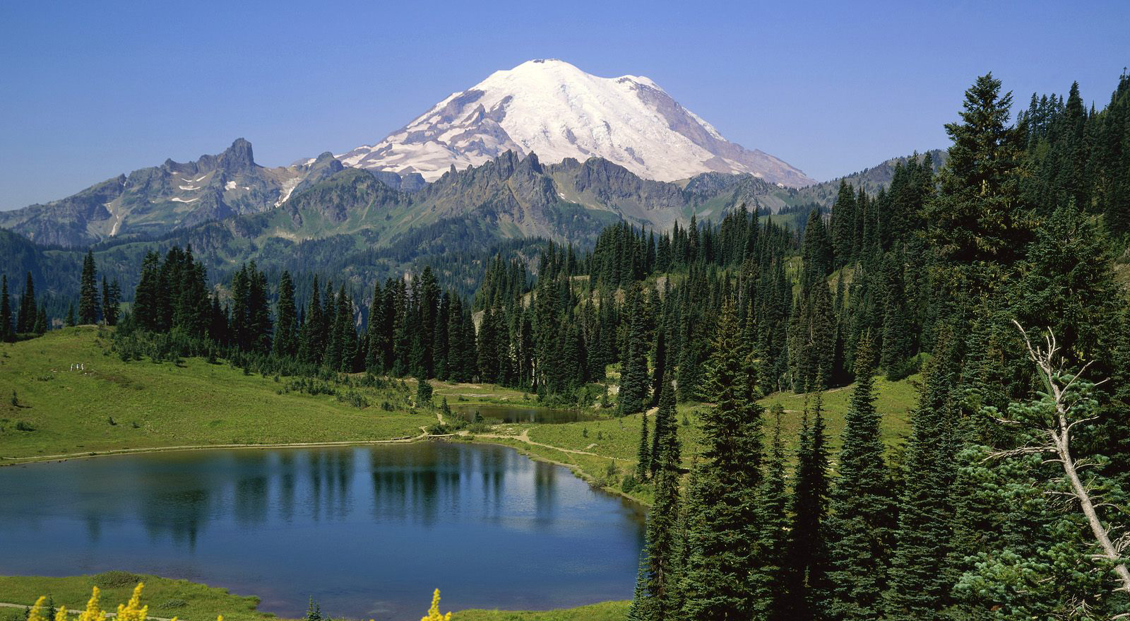 mount rainier christian personals This may contain online profiles, dating websites, forgotten social media accounts, and other potentially embarrassing profiles mount rainier christian macauley.