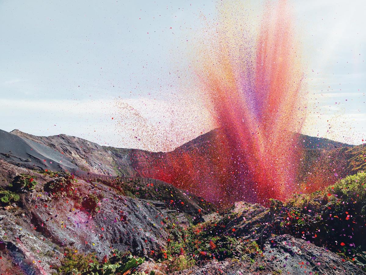Volcano of flower petals erupts.