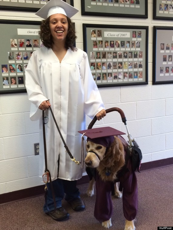 A Loyal Service Dog Will Walk His Human Across the Stage…Wearing a ...
