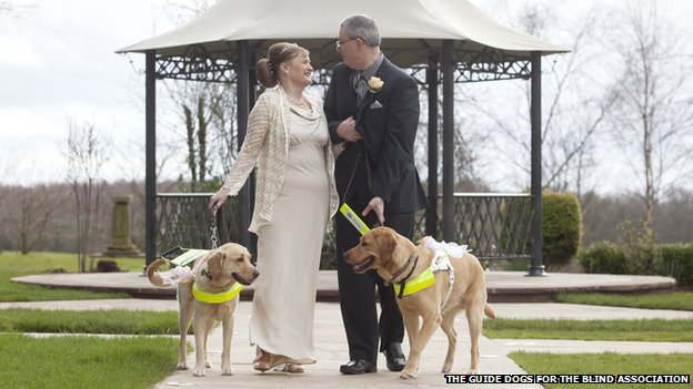 Couple Gets Married Because of Guide Dogs