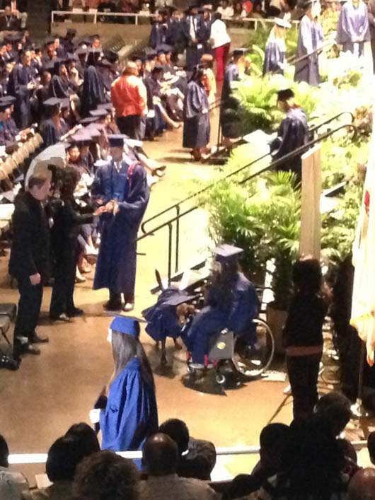 Service Dog Attends Graduation Ceremony With Owner And Wears A Cap