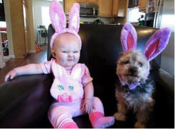 Play dress-up with your dog!