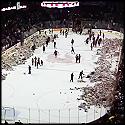 Hockey Fans Throw Over 10000 Teddy Bears on the Ice