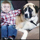 3 Legged Dog Helps a Special Little Boy Overcome his Fears