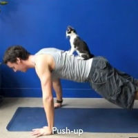 Guy Exercises With His Feline Friends
