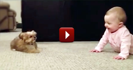 Shhh Hear That This Puppy And Baby Have Their Own Language