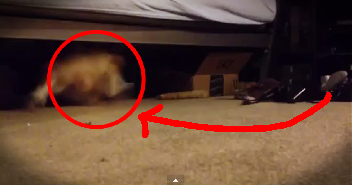 how to draw monsters under the bed