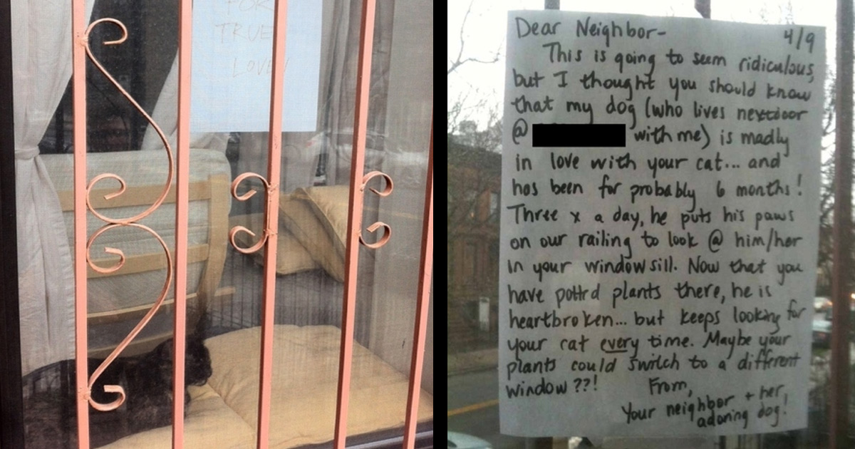 Houseplants Nearly Killed True Love