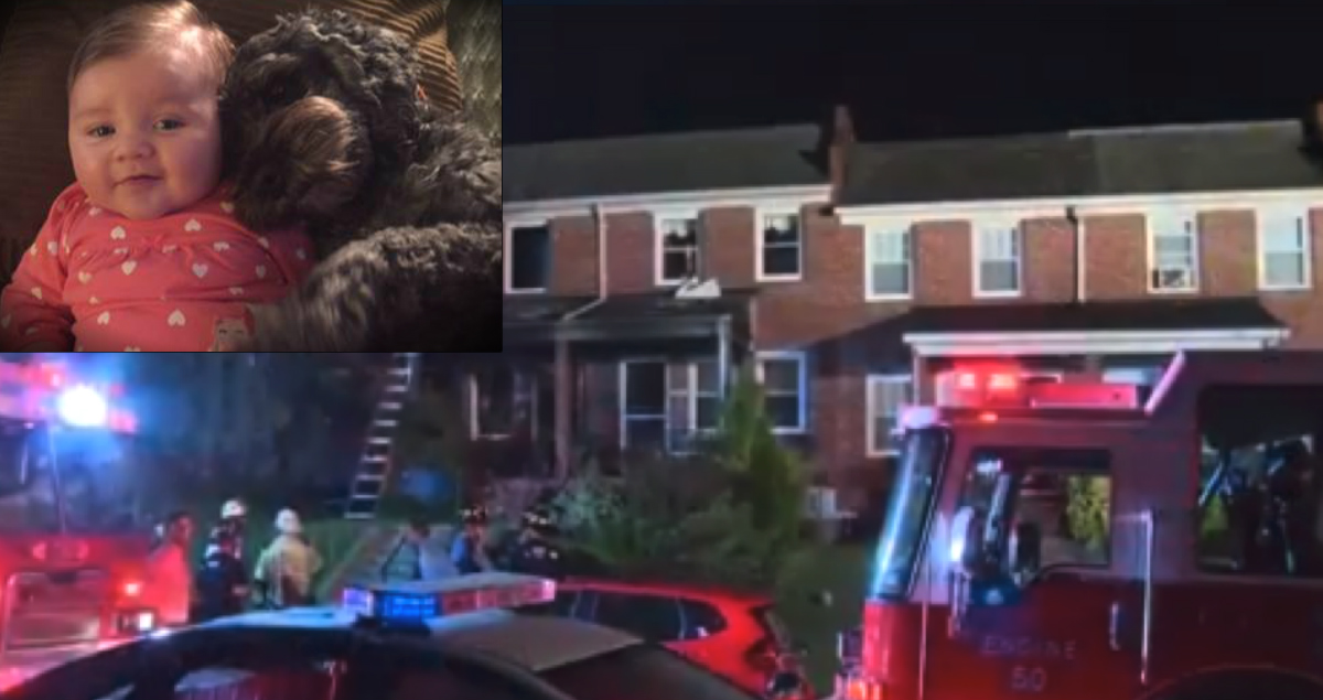 Dog Gave His Life Trying To Shield Baby Girl From A House Fire - TEARS!
