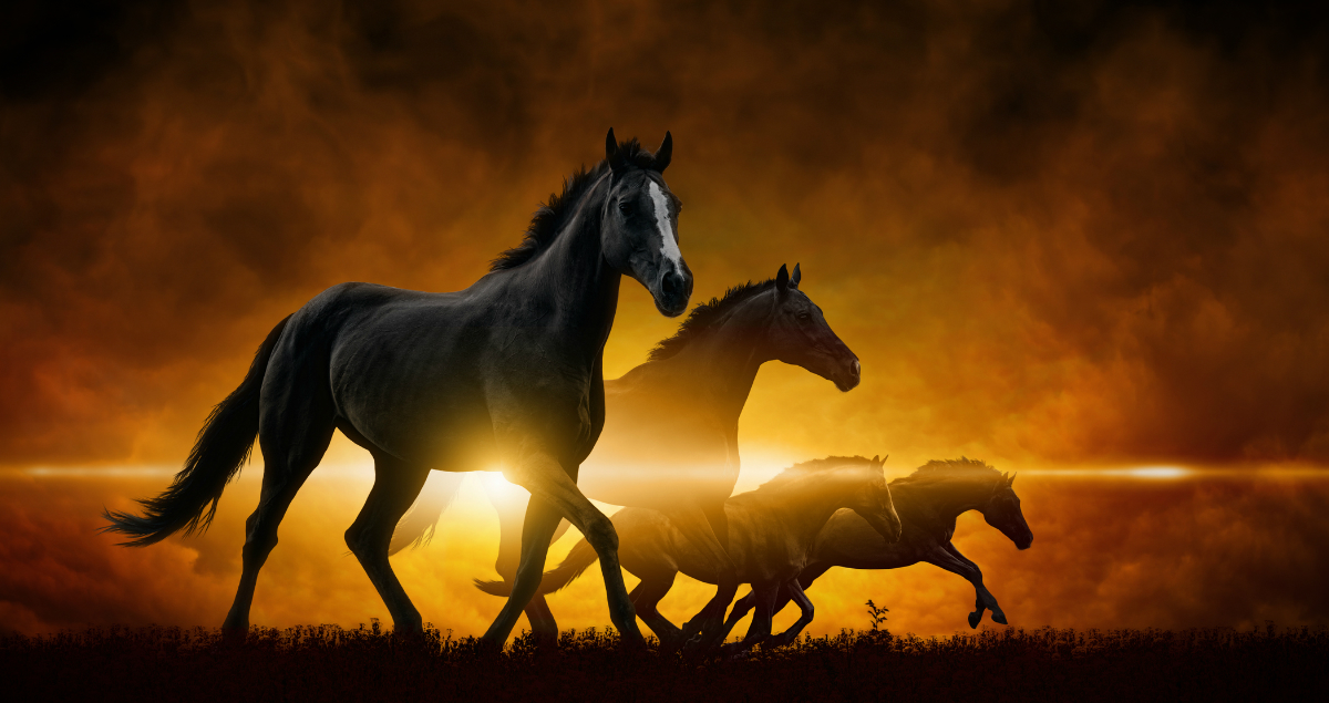 4 Horses Of The Apocalypse: What They Are And Why They Matter