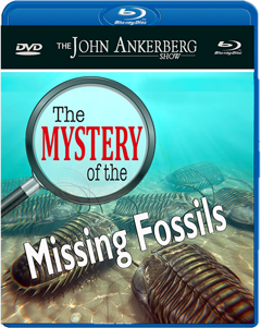 The Mystery of the Missing Fossils