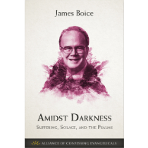 Amidst Darkness: Suffering, Solace, and the Psalms (PDF Download)