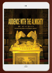 Audience with the Almighty- Audio Download