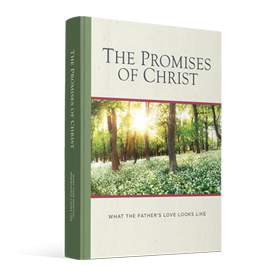 The Promises of Christ
