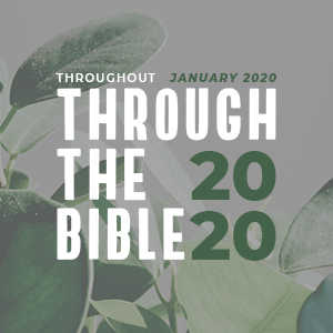 Through The Bible In 2020