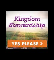 You are a Kingdom Steward