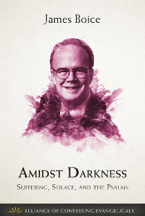 Amidst Darkness (PDF Download)