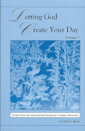 Letting God Create Your Day-Vol 7