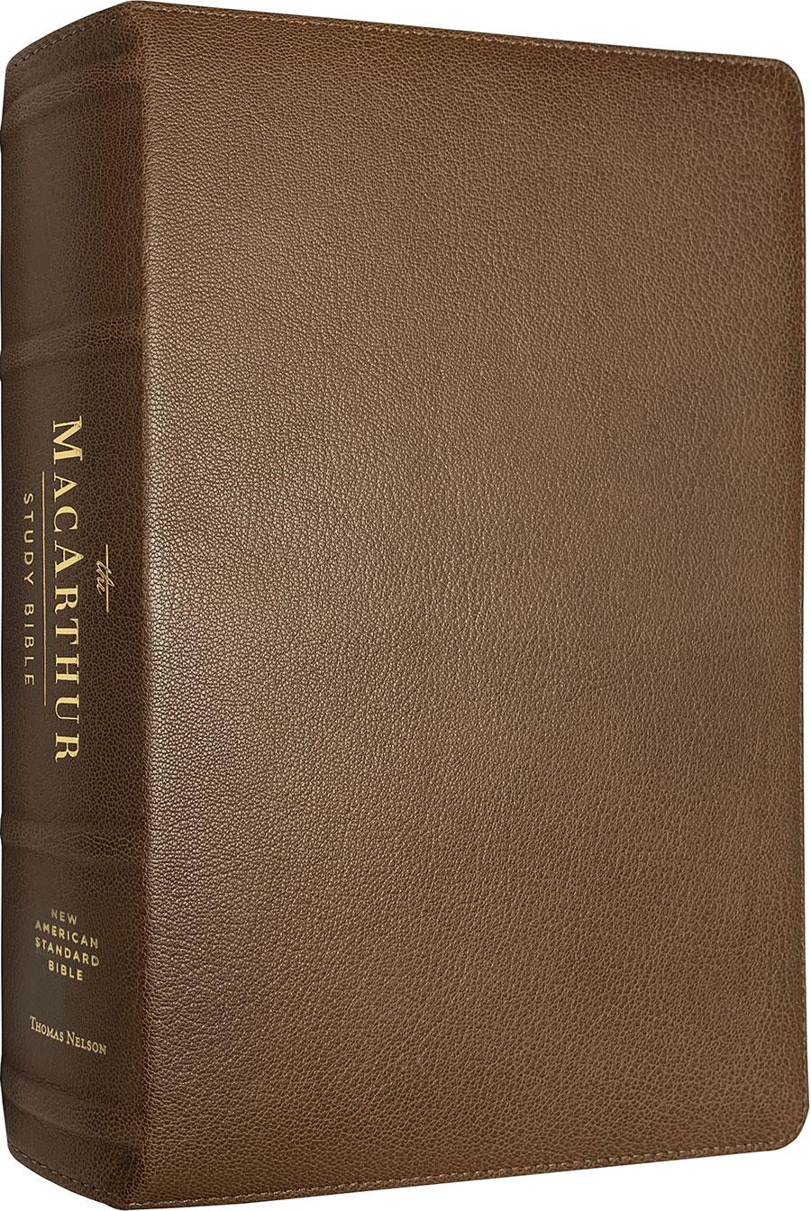 NAS MacArthur Study Bible (Second Edition) (Premium Leather)